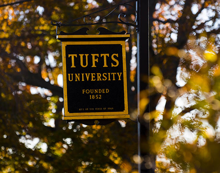 Tufts sign fall